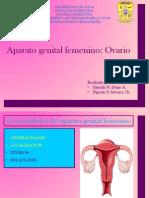 Aparato Genital Femenino y Ovario