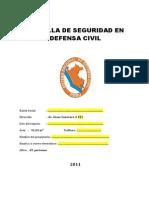 CARTILLA DE SEGURIDAD 2011.docx