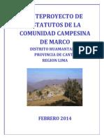 Anteproyecto - Estatutos Comunidad Marco - 2014.pdf