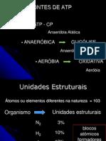 Metabolismo Dos Carboidratos