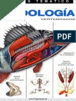Ciencia - Atlas Tematico de Zoologia Vertebrados