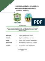 Identificación de Los Actores Para La Conformación Formal de La Comisión Ambiental Municipal Del Distrito de Padre