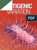 Antigen & Mechanism of the Immune system