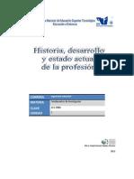 1.1. Estudio Del Desarrollo de Su Profesion y Su Estado Actual