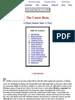 Castor Bean Plant