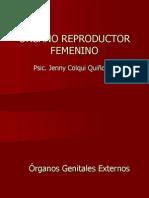 A.- Org. Femenino