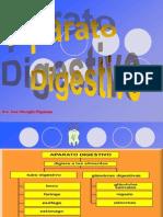 Aparato Digestivo i Boca 2014