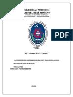 Informe Metodo de Steffensen