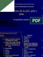 Piel Y Pelosept2007