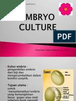 ssttt Embrio