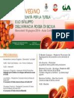 Comune Di Scordia Convegno Giu 2014 Invito (1) (1)