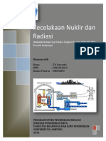 Kecelakaan Nuklir dan Radiasi
