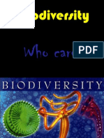 Biodiversity Meaning