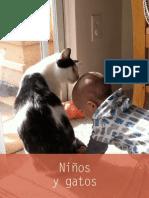 Niños y Gatos ¿Buena combinación?