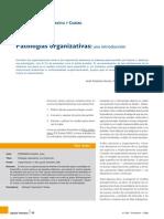 Patologias Organizativas (Javier Fernandez Aguado)