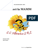 ETH-Proiect Final MAMM-Panainte Ovidiu Si Rusu Gabriel