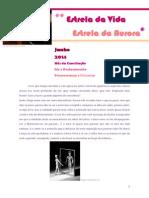 2014_06_Reflexão Do Mês EVEA_Patrícia Almeida