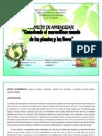 Proyecto de Las Plantas 1er Grado
