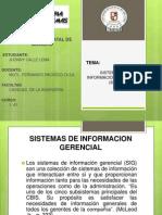 SIG...Enfoque de sistemas.pptx