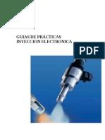 Manual Inyeccion
