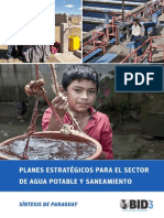 Sintesis PES APyS Paraguay