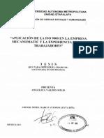 Aplicacion de ISO en La Empresa Mecanomatic y La Experiencia de Los Trabajadores