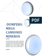 Informe de Dumper Oficial
