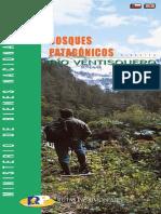 Bosques Patagónicos Río Ventisquero - Ruta 10