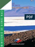 Andes altiplánicos Salar del Huasco - Collacahua - Ruta 37