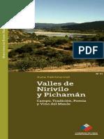 Valles de Nirivillo y Pichamán - Ruta 51