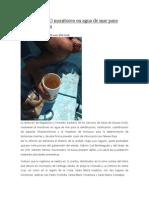 09/06/14 News Mantienen SSO Monitoreo en Agua de Mar Para Prevenir Marea