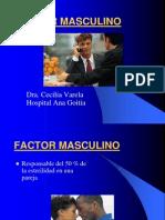 factormasculino-110225174409-phpapp01