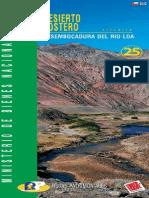 Desierto Costero Desembocadura del Río Loa - Ruta 25