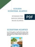 Ecologia Sistema Acuatico