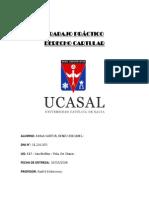 Trabajo Practico Cartular - Ayala Sartor Renzo Exequiel