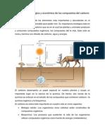 Importancia Ecológica y Económica de Los Compuestos Del Carbono
