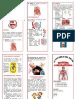 Triptico Sistema Circulatorio