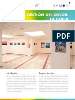 Sesion33 Gestion Del Color. La Copia