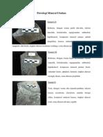 Petrologi Mineral Ubahan