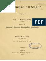 Tornier (1900)-Beschreibung Eines Neuen Chamaeleons (C. Pfefferi)