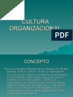 3566554 Cultura Organizacional