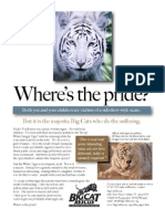 White Tiger Brochure