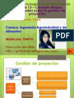 Semana 13 – Creando Mapas Conceptuales Sobre La Gestión de Proyectos.