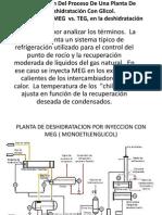 Descripción Del Proceso de Una Planta de Deshidratación