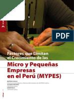 Factores Que Limitan Crecimiento de Mypes