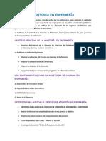 Resumen Auditoria en Enfermerí1