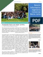 Boletín Informativo N°2 - CAA ICOM 2014