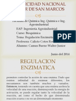 Regulacion Enzimatica