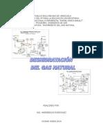 Guia DESHIDRATACIÓN Tratamiento Gas Natural