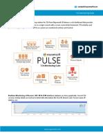 PULSE T24MonitoringSuite Nayamsoft Flyer